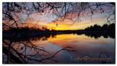 Anibal-Group-LLC-Lake-Shannon-net-sunset.